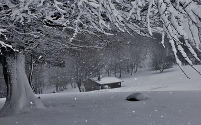 Prevención de patologias de invierno. La invasión de las «ITIS»